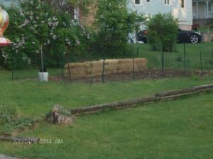 garden blgo 003